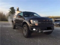 Ford F 150, 30.000 EUR