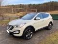 Hyundai Santa Fe,8.900EUR